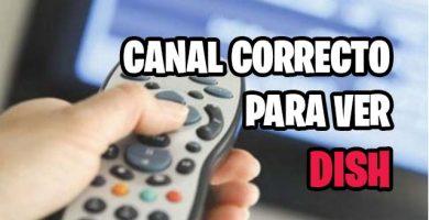 en que canal debe estar la tv para ver dish