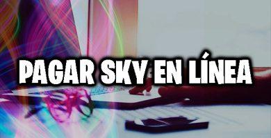 pagar sky en linea